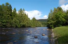 Royal Deeside Tour - River Dee