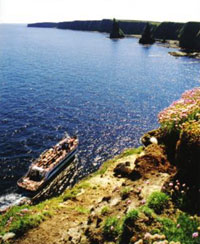 Orkney Islands Highlights Day Trip from John OGroats