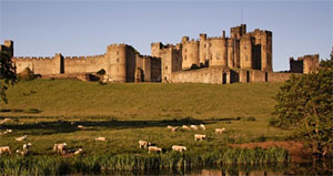 Alnwick Castle Tour from Edinburgh